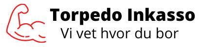 Torpedo Inkasso